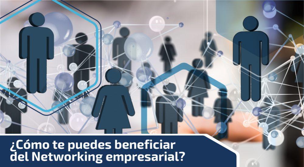 ¿Cómo te puedes beneficiar del Networking empresarial?